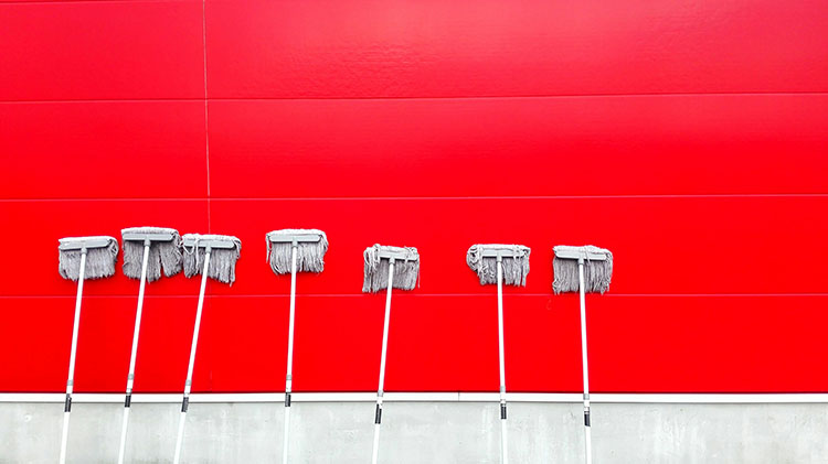 Mops on a red wall